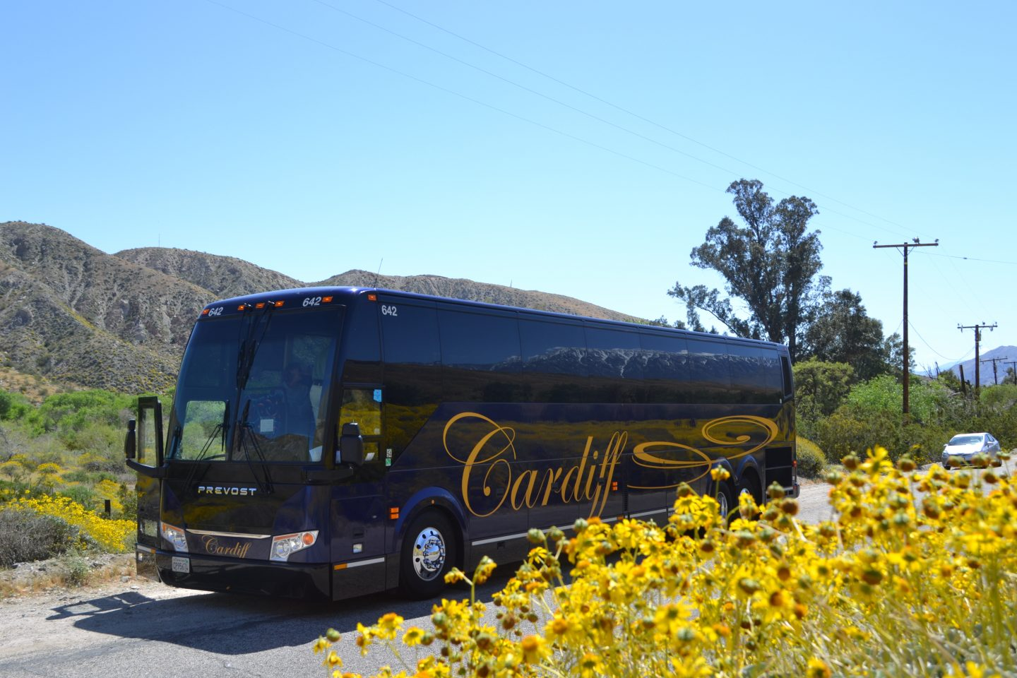 5 Big Reasons You Should Consider A Charter Bus For Your Party